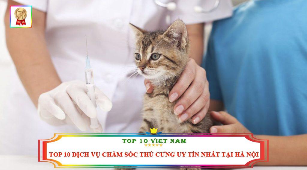 TOP 10 DỊCH VỤ CHĂM SÓC THÚ CƯNG UY TÍN NHẤT TẠI HÀ NỘI